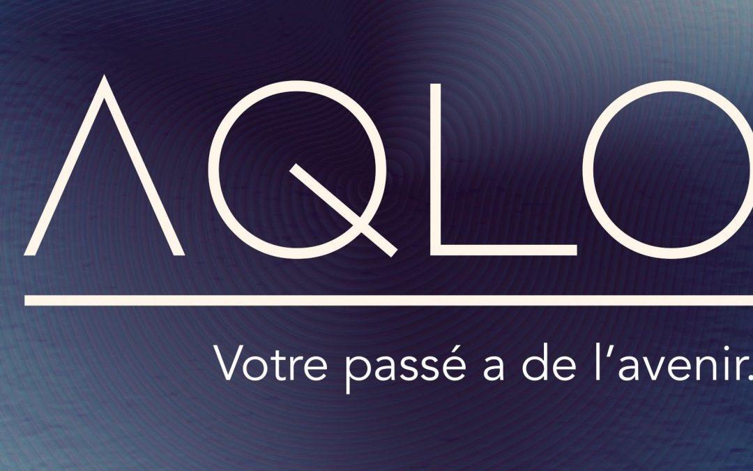 Racheter un nom de domaine : AQLO raconte son rachat confié à Solidnames